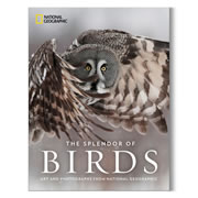 """This is the collection of National Geographic's best artwork and photography that depicts the magnificence of birds. The book contains images of birds from around the world, from vintage paintings, to classic black and white photos, to state of the art telephoto camera shots. The book's four chapters span the history of the magazine's art archives in chronological order starting in 1888 and ending in 2018. It captures the unique plumage, physique, and habitats of over 300 species, including the Hummingbird, Emperor Penguin, Gray-Crowned Crane, Yellow-billed Cuckoo, and Vulture. Hardcover; 512 pages. 11 3/4"""" L x 9 1/4"""" W x 2"""" D. (5 1/2 lbs.)"""