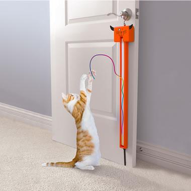 The Award Winning Cat String Toy