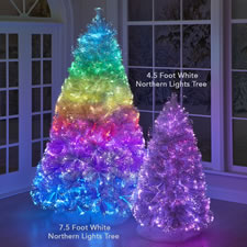 The White Northern Lights Tree (4 1/2')