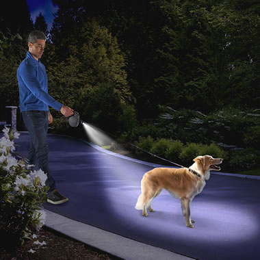The Only Dog Tracking Illuminated Leash