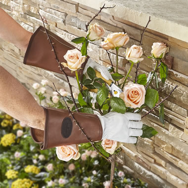 The Anti-Thorn And Bramble Garden Gloves