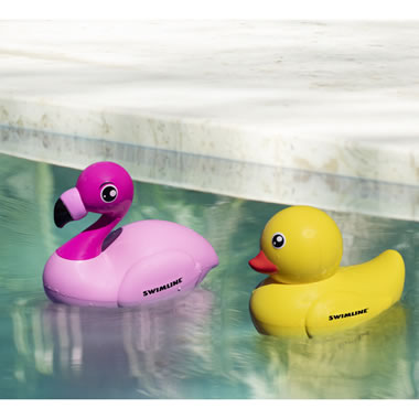 The Remote Controlled Duck And Flamingo