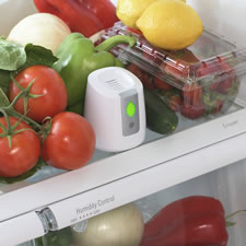 The Food Preserving Refrigerator Air Purifier