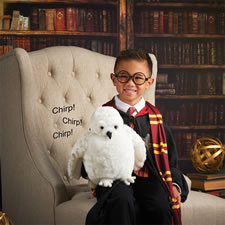 Harry Potter's Chirping Hedwig Puppet
