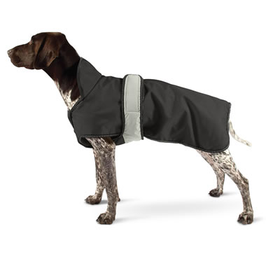 The All Weather Dog Coat
